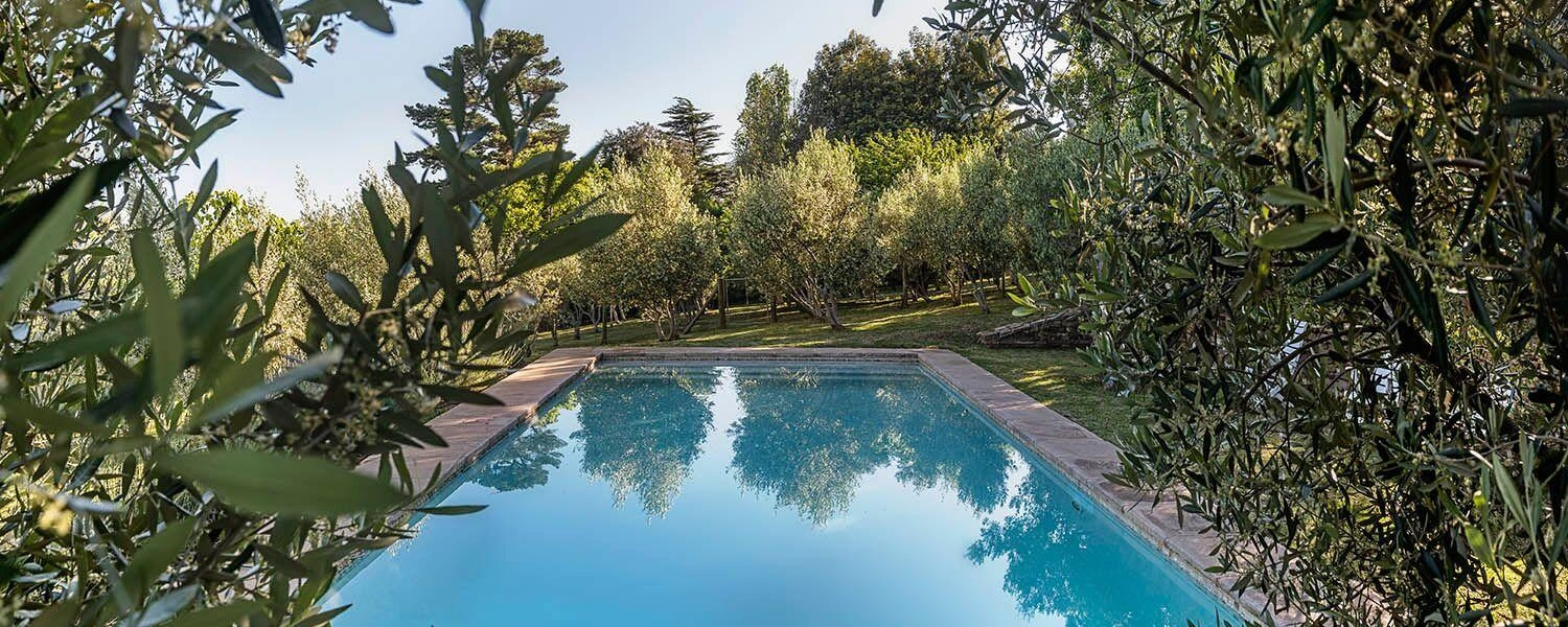 A dip in the salt-water pool set in the olive grove